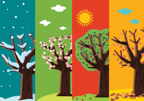 Four Seasons Abstract Trees Vector